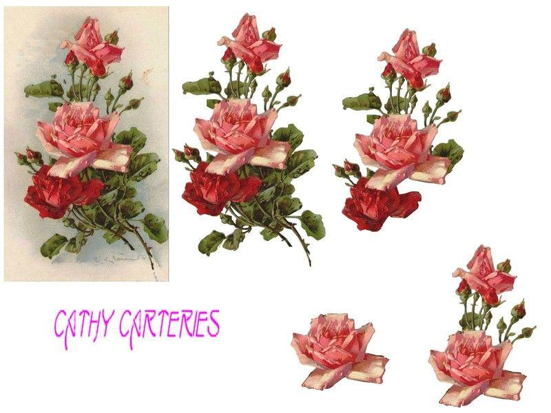 Des roses anciennes rose ancienne - Catalogue de fleurs gratuit ...